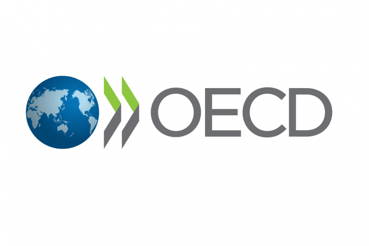Logo of the OECD. A globe followed by the letters O E C D.