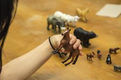 Photo: A person holding a toy horse
