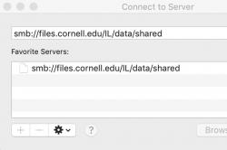 Windows dialog with server selected whose address is smb://files.cornell.edu/IL/data/shared