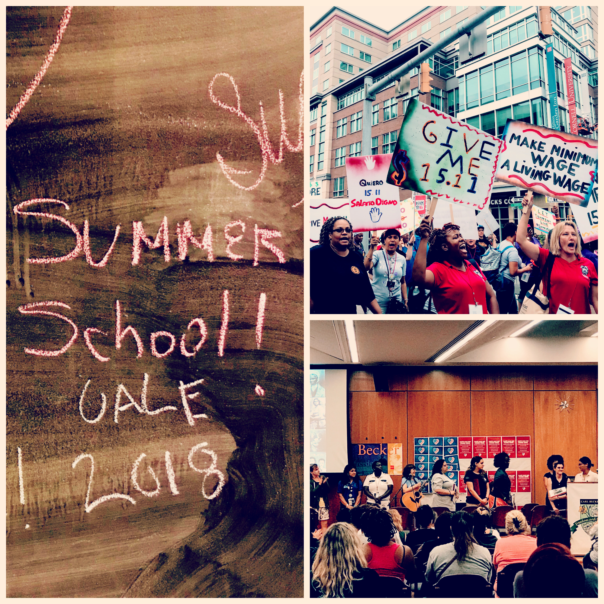 Collage of Photos from UALE Summer School